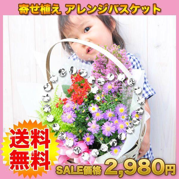 花 誕生日 フラワープレゼント 季節の寄せ植えフラワーギフト gifuryokuen-store