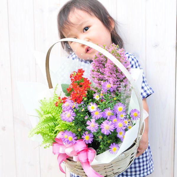 花 誕生日 フラワープレゼント 季節の寄せ植えフラワーギフト gifuryokuen-store 02