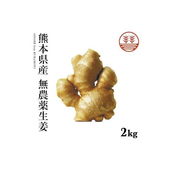 無農薬 生姜 2kg 熊本県産 国産 送料無料 生姜 しょうが ショウガ 根生姜 佃煮 薬味 きざみ 生姜 生姜焼き 唐揚げ