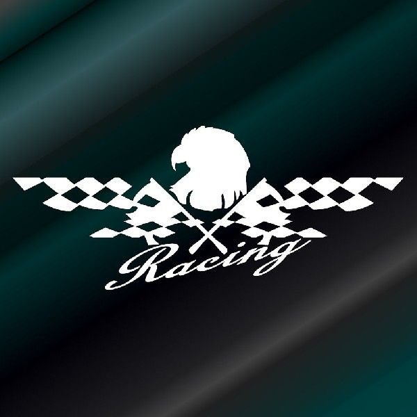車 ステッカー かっこいい レーシング チェッカー ステッカー|ginkage|02