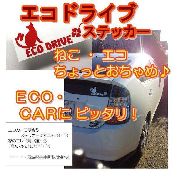 エコ ステッカー かわいい ねこステッカー サイズ:10cm×20cm   車 ステッカー カッティング ステッカー 猫|ginkage|02