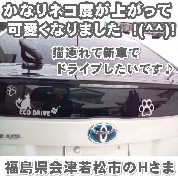 エコ ステッカー かわいい 猫ステッカー サイズ:15cm×30cm   車 ステッカー  ネコ ドライブ 猫グッズ 猫雑貨 ねこ雑貨|ginkage|03