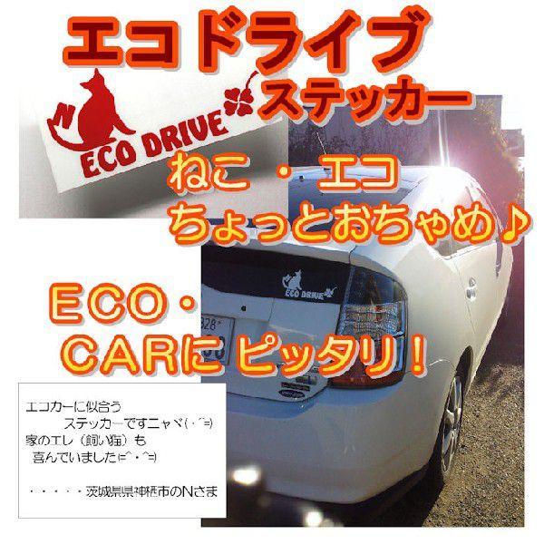 かわいい エコ 猫 ステッカー  サイズ:10cm×20cm 猫 車 ステッカー ECO Drive 車 ステッカー カッティング ステッカー 猫 猫グッズ|ginkage|02