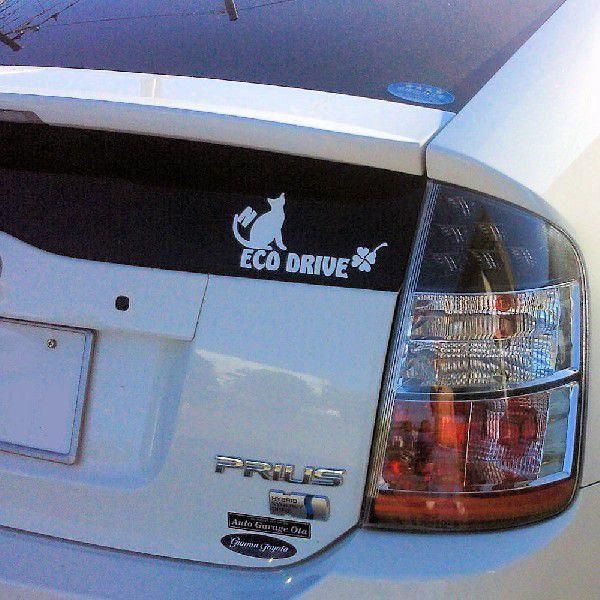 かわいい エコ 猫 ステッカー  サイズ:10cm×20cm 猫 車 ステッカー ECO Drive 車 ステッカー カッティング ステッカー 猫 猫グッズ|ginkage|06
