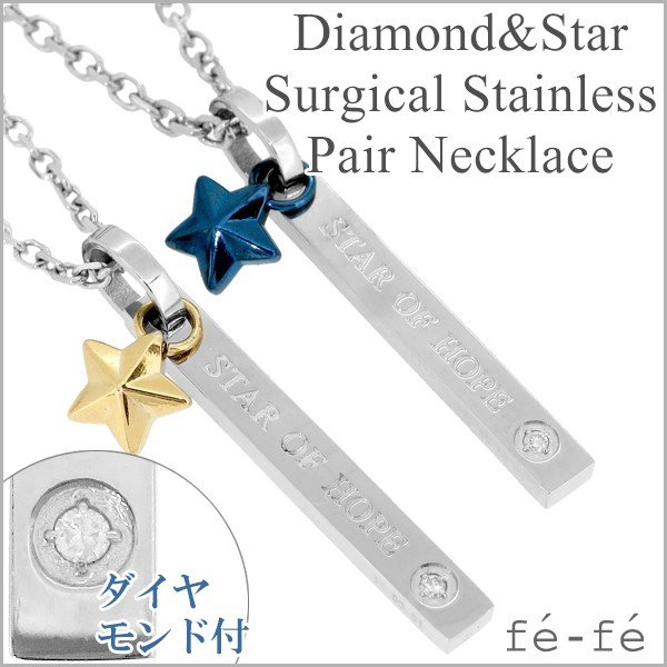 ペアネックレス ステンレス ブランド ダイヤモンド スターチャーム サージカルステンレス fe-fe ペアルック お揃い ペンダント