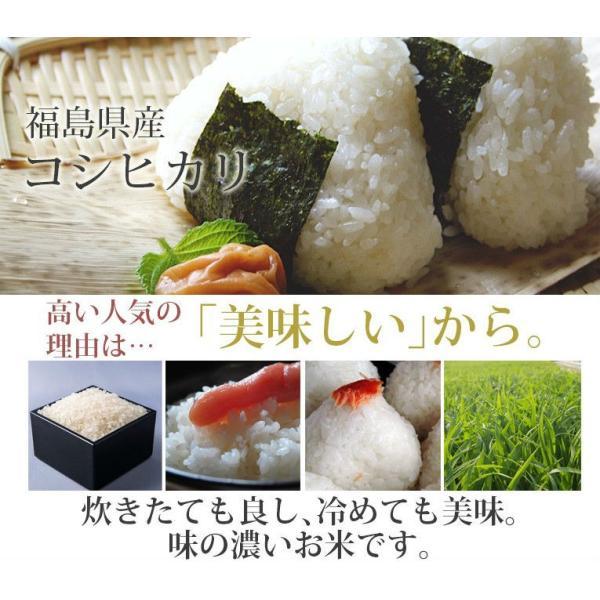 新米 米 10kg 精米 福島中通り産コシヒカリ 送料無料 平成30年産  1等米 お米|ginshari|02