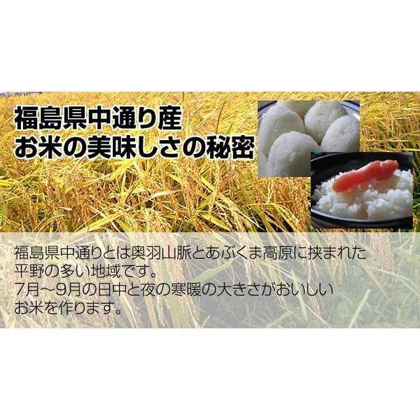 新米 お米 米 10kg 精米 乾式無洗米 選べる精米方法 福島中通り産コシヒカリ 送料無料 令和元年産|ginshari|03