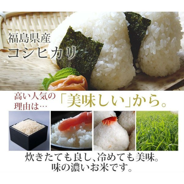 米 20kg 精米 福島中通り産コシヒカリ 送料無料 平成29年産 1等米 お米|ginshari|02