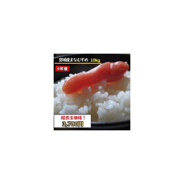お米 米 10kg 宮城産まなむすめ 精米  無洗米 乾式無洗米 送料無料 令和2年産