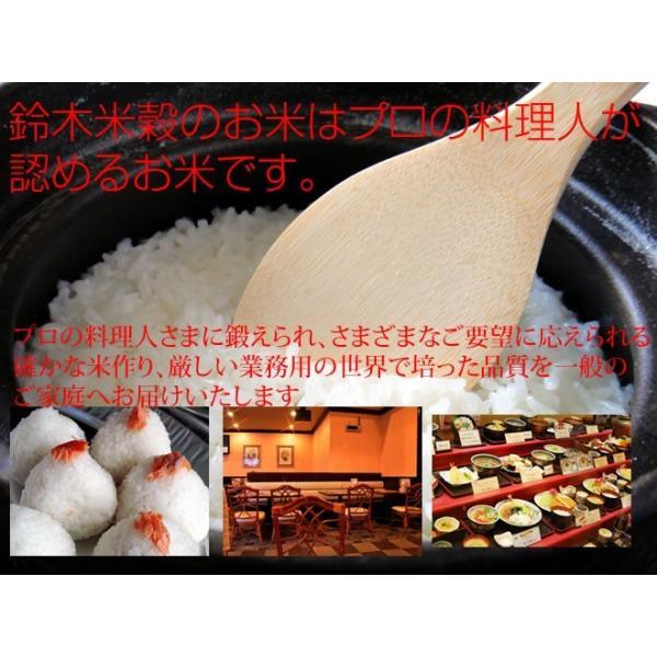 米 10kg 青森県産まっしぐら 無洗米 乾式無洗米 送料無料 平成29年産|ginshari|04