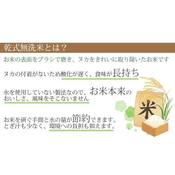 米 10kg 北海道産ゆめぴりか 無洗米 乾式無洗米 送料無料 平成29年産|ginshari|05