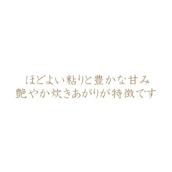 米 20kg お米 玄米 北海道産 ゆめぴりか 送料無料 平成29年産 1等米  選べる精米方法|ginshari|03