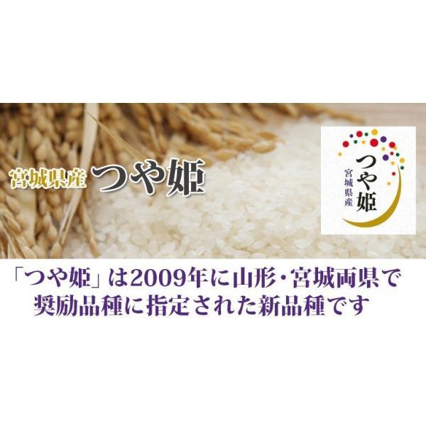 新米 お米 米 30kg お米 宮城産 つや姫 玄米 送料無料 令和元年産 選べる精米方法 ginshari 02