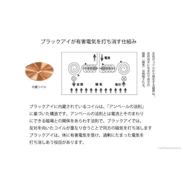 丸山式 コイル ブラックアイ 6個入り 電磁波対策 肩 こり 解消グッズ 首 腰痛 背中|gjweb|03