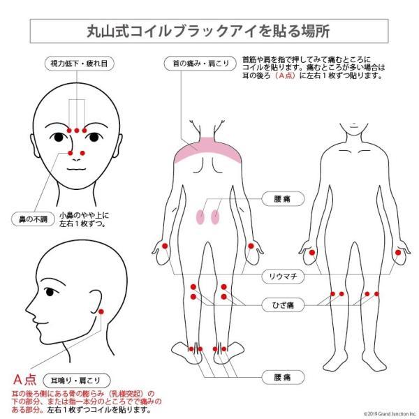 丸山式 コイル ブラックアイ 6個入り 電磁波対策 肩 こり 解消グッズ 首 腰痛 背中|gjweb|07