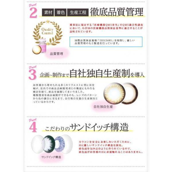 日本製 度あり 度なし 1ヶ月 フォーリンアイズ ブラウンシリーズ 1箱2枚入り カラコン カラーコンタクトレンズ|glasscore|04