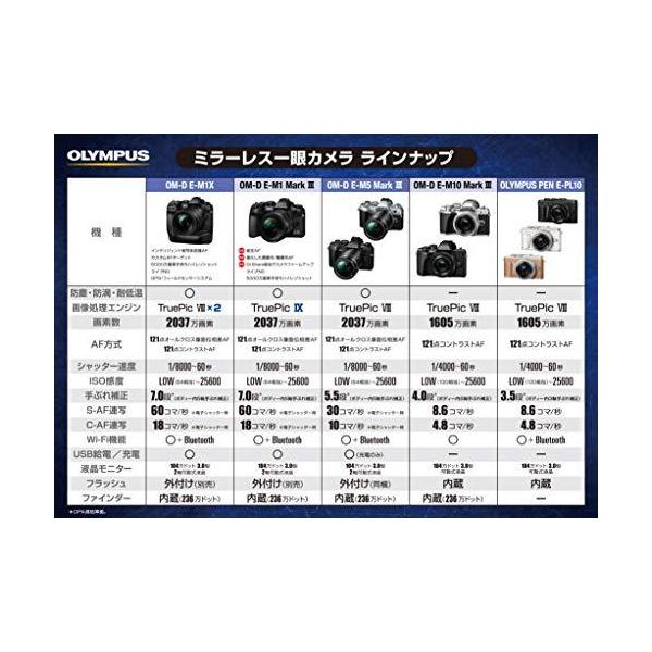 OLYMPUS ミラーレス一眼カメラ OM-D E-M10 MarkIII EZダブルズームキット シルバー globetrotter-shop 05