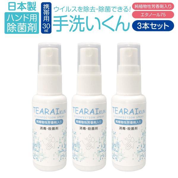 除菌 手 除菌剤 30ml 3本セット アルコール ウイルス対策 エタノール 75 純植物性 除菌消臭 スプレータイプ tearaikun-30|gochumon