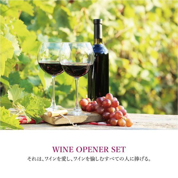 ワインオープナー ワインオープナー ワイン オープナー エアー 4点セット ワインオープナー ホイルカッター ポワラー ワインストッパー wine-opener02|gochumon|02