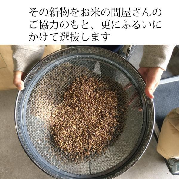 雑穀 もち麦 パック 国産 無農薬 栄養価最高峰の殻付き紫もち麦品種 セール godaihasebegift 12