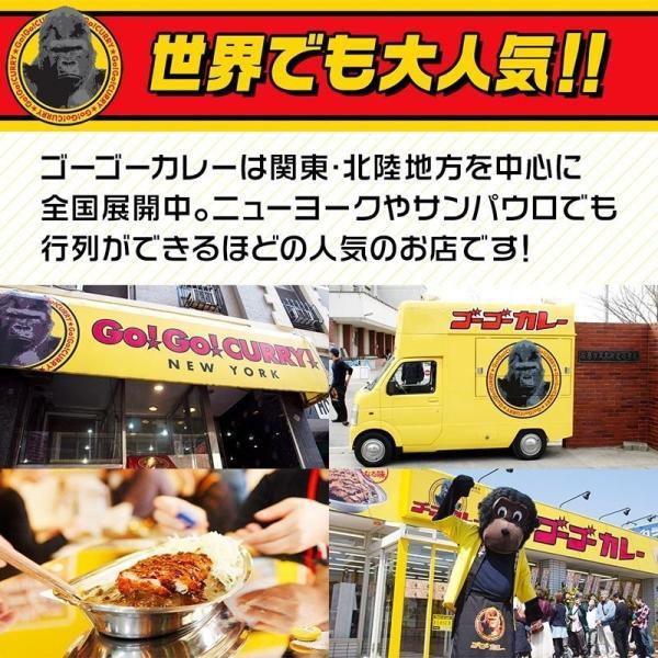 ゴーゴーカレー 辛口 1食入り レトルトカレー ご当地 カレー 激辛 ポークカレー 金沢カレー|gogo-curry|11