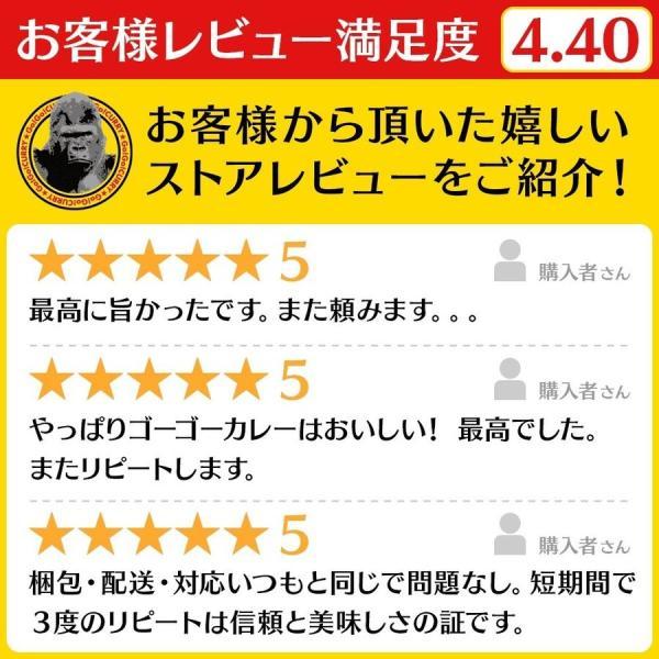 ゴーゴーカレー 金澤プレミアム ビーフカレー 2食 セット レトルトカレー お試し gogo-curry 06