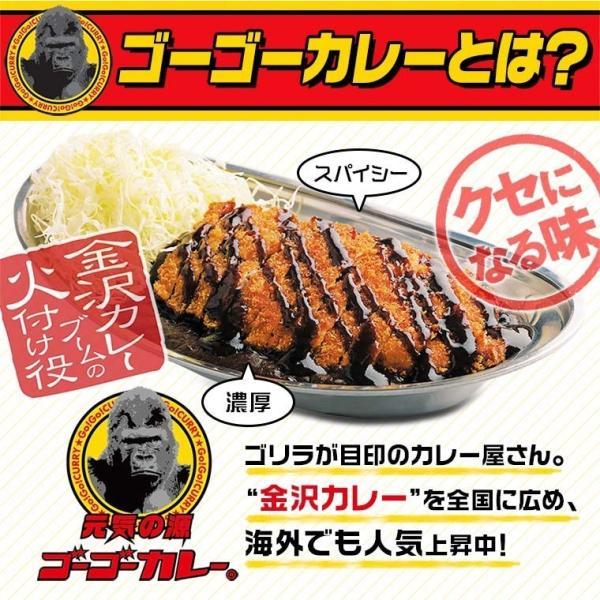 ゴーゴーカレー レトルト 中辛 & 金澤プレミアムビーフカレー 3食 セット メール便|gogo-curry|02