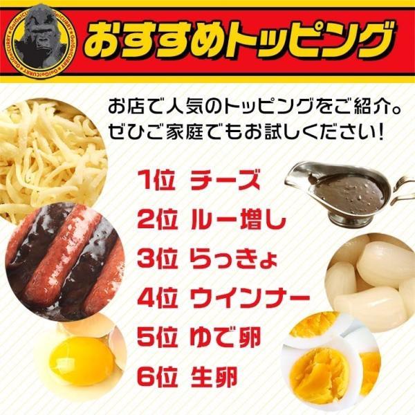 ゴーゴーカレー レトルト 中辛 & 金澤プレミアムビーフカレー 3食 セット メール便|gogo-curry|05