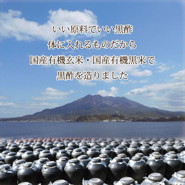 【ポイント10倍・送料無料】ゴールド黒酢 200ml 化粧箱3本セット goldkurozu 02