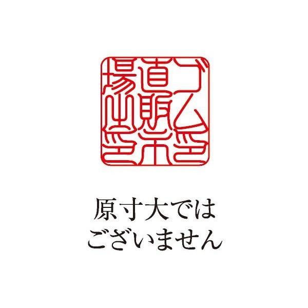 角印 耐油ゴム 18ミリ 印相(吉相)体 会社印 社印 法人印 印鑑 社判 屋号