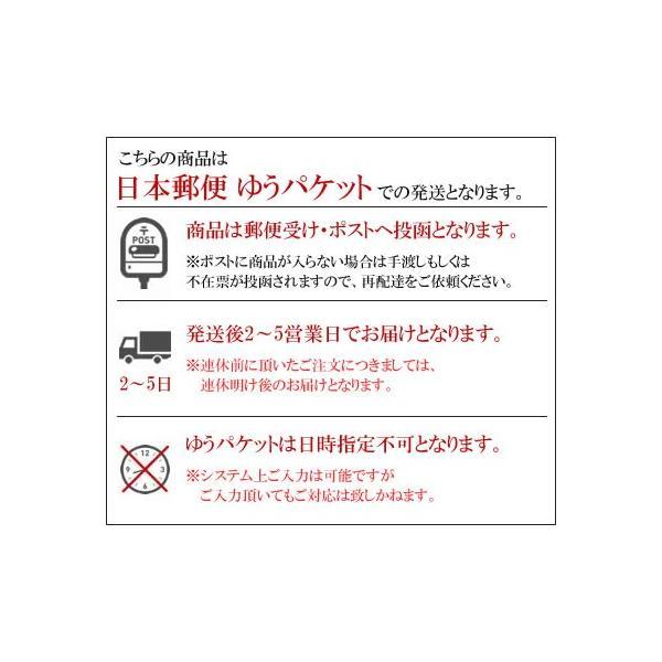 ニップル ケア 陥没乳首 乳頭 補正器 シリコン製 吸引器 矯正 女性 goodsland 06