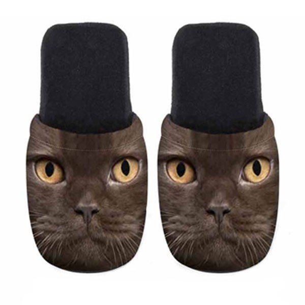 ユーロスポンジ CATS BLACK OS BACK Mサイズ スリッパ eurospugna  ユニセックス メンズ レディース ルームシューズ 猫 ねこ ネコ