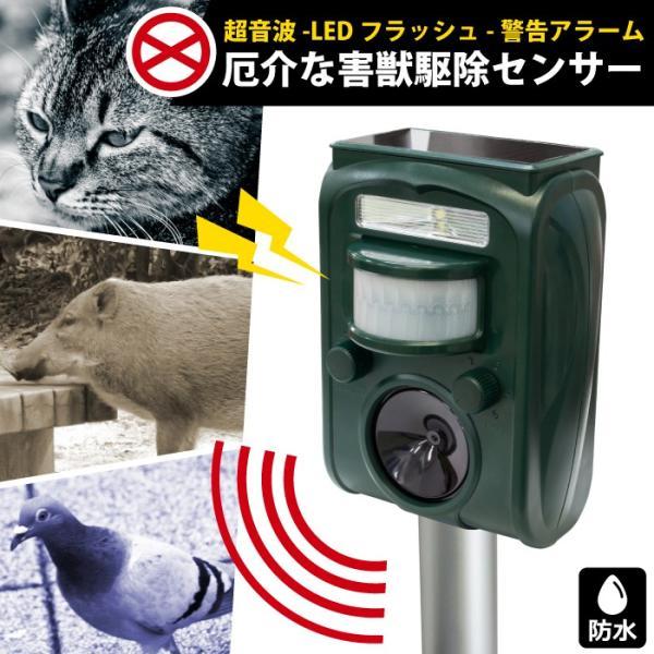 【あすつく】動物撃退器 害鳥撃退器 赤外線センサー感知 超音波 LEDライト  防水型ソーラーパネル充電 猫駆除 ネズミ GR-1【送料無料】