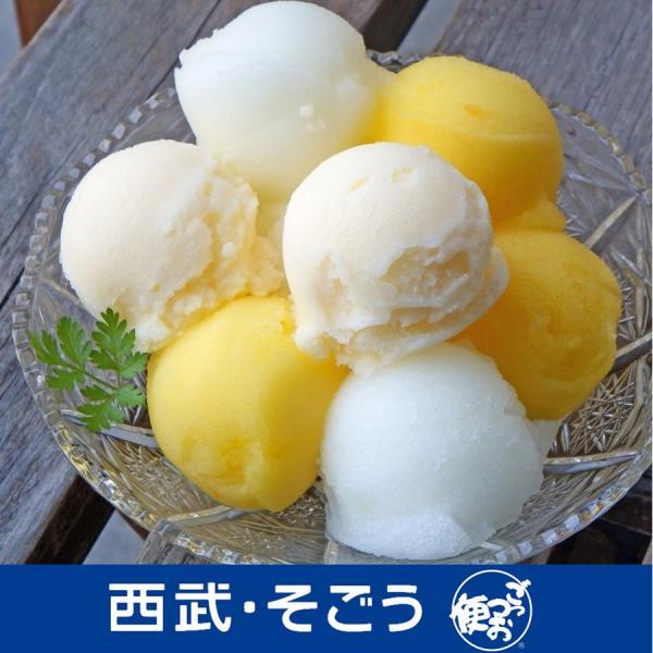 高知アイス Made in 土佐 の アイスクリン と 柑橘 シャーベット セット