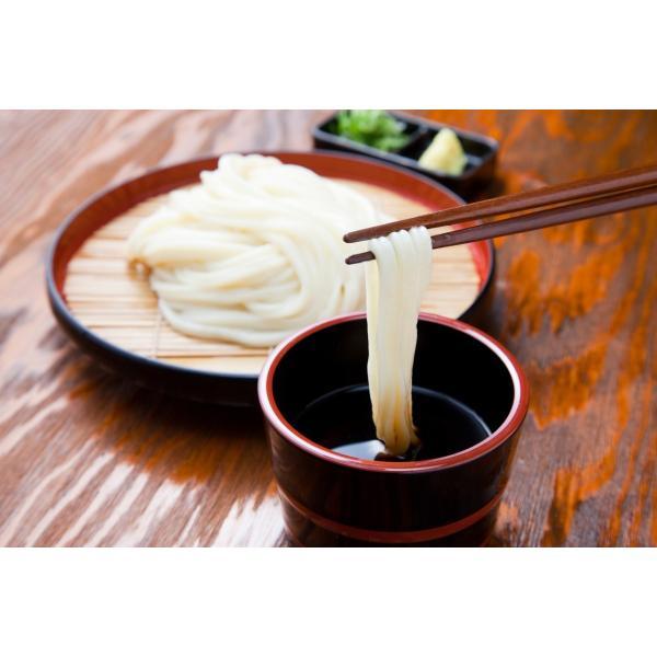 杵屋 半生うどん 40人前(20袋)(麺のみ) 国産 あやひかり使用|gourmet-kineya|06