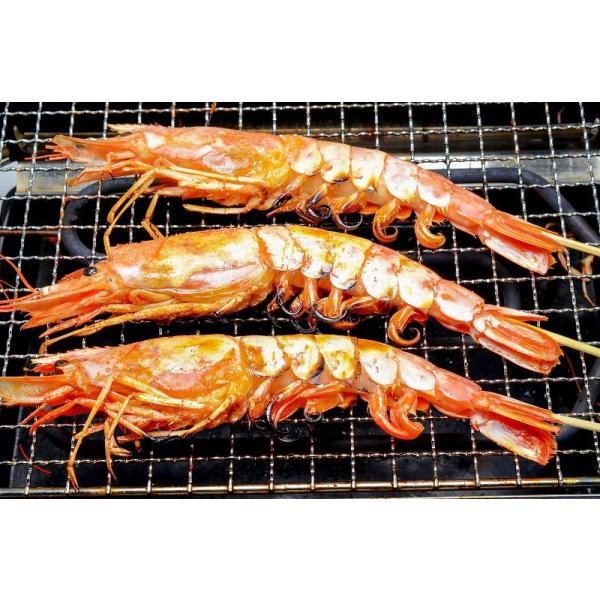 赤海老 赤えび 2kg 特大 L2 30〜60尾 業務用 1箱 赤エビ あかえび アカエビ 寿司 刺身用|gourmet-no-ousama|15