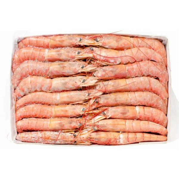 赤海老 赤えび 2kg 特大 L2 30〜60尾 業務用 1箱 赤エビ あかえび アカエビ 寿司 刺身用|gourmet-no-ousama|17