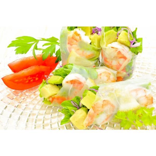冷凍 アボカド ダイスカット 500g ×1個 業務用 gourmet-no-ousama 11