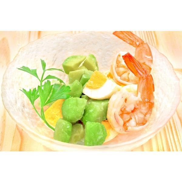 冷凍 アボカド ダイスカット 500g ×1個 業務用 gourmet-no-ousama 10