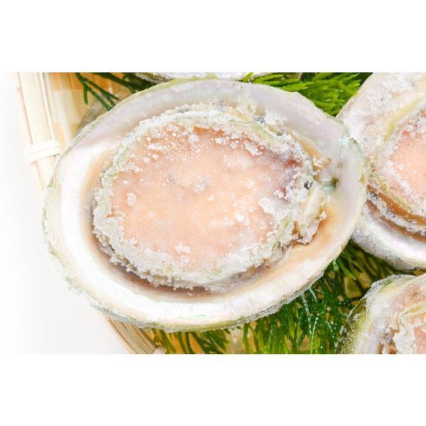 あわび Lサイズ 1kg 1箱12個入り(殻つきお刺身用アワビ 翡翠の瞳)|gourmet-no-ousama|04