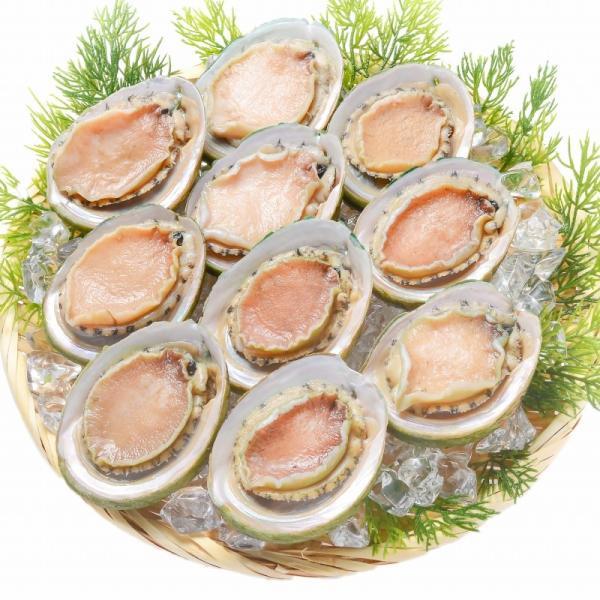あわび Lサイズ 1kg 1箱12個入り(殻つきお刺身用アワビ 翡翠の瞳)|gourmet-no-ousama|05
