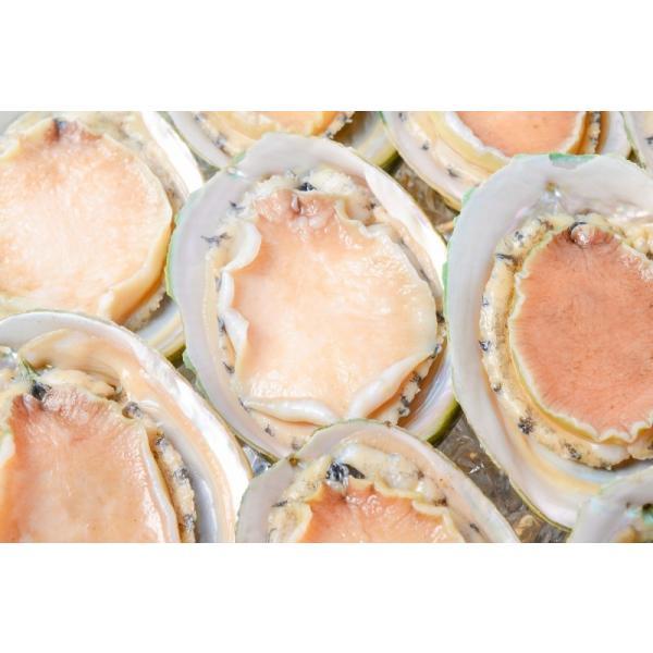 あわび Lサイズ 1kg 1箱12個入り(殻つきお刺身用アワビ 翡翠の瞳)|gourmet-no-ousama|07