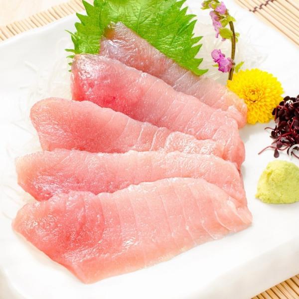 トロびんちょうまぐろ 1kg (ビンチョウマグロ トロビンチョウ びんとろ ビントロ まぐろ マグロ 鮪 刺身) gourmet-no-ousama 03