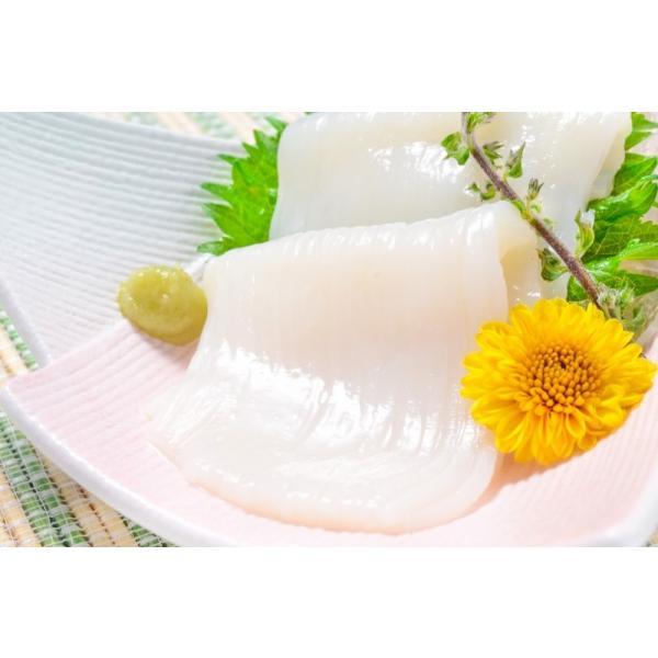 いかそうめん イカソーメン 400g(いか イカ 烏賊)|gourmet-no-ousama|05