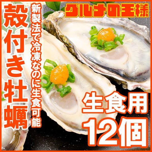 生牡蠣 殻付き 生食用カキ(12個入り 冷凍殻付き牡蠣 生食用)