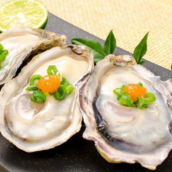生牡蠣 殻付き 生食用カキ(12個入り 冷凍殻付き牡蠣 生食用) gourmet-no-ousama 07