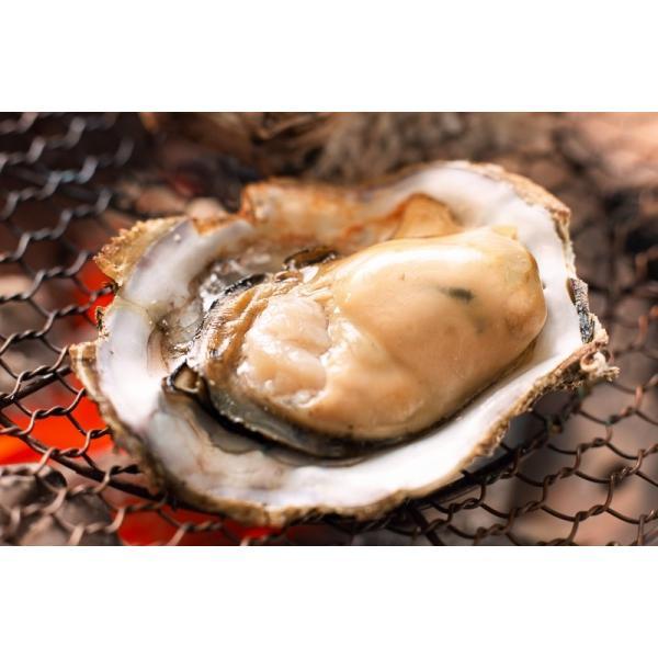 生牡蠣 殻付き 生食用カキ(12個入り 冷凍殻付き牡蠣 生食用) gourmet-no-ousama 08