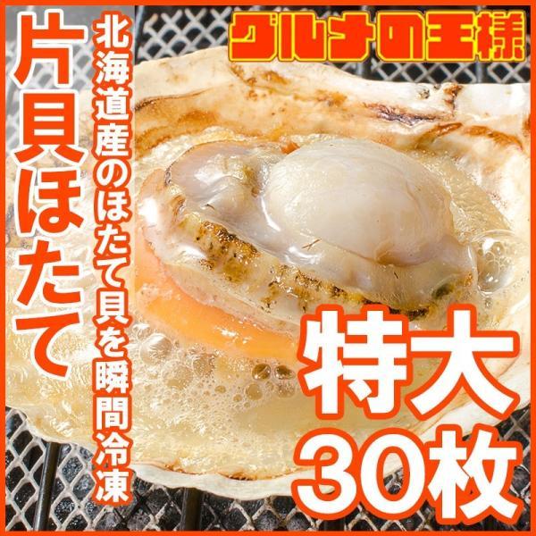 ホタテ ほたて 特大 片貝ほたて 30枚 10枚×3袋 (殻付きほたて 帆立 貝 バター焼き 浜焼き バーベキュー BBQ 業務用 築地市場 ギフト) gourmet-no-ousama