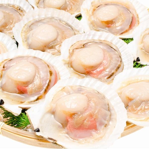 ホタテ ほたて 特大 片貝ほたて 40枚 10枚×4袋 (殻付きほたて 帆立 貝 バター焼き 浜焼き バーベキュー BBQ 業務用 築地市場 ギフト)|gourmet-no-ousama|02