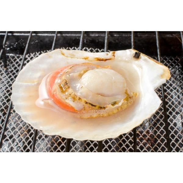 ホタテ ほたて 特大 片貝ほたて 40枚 10枚×4袋 (殻付きほたて 帆立 貝 バター焼き 浜焼き バーベキュー BBQ 業務用 築地市場 ギフト)|gourmet-no-ousama|04